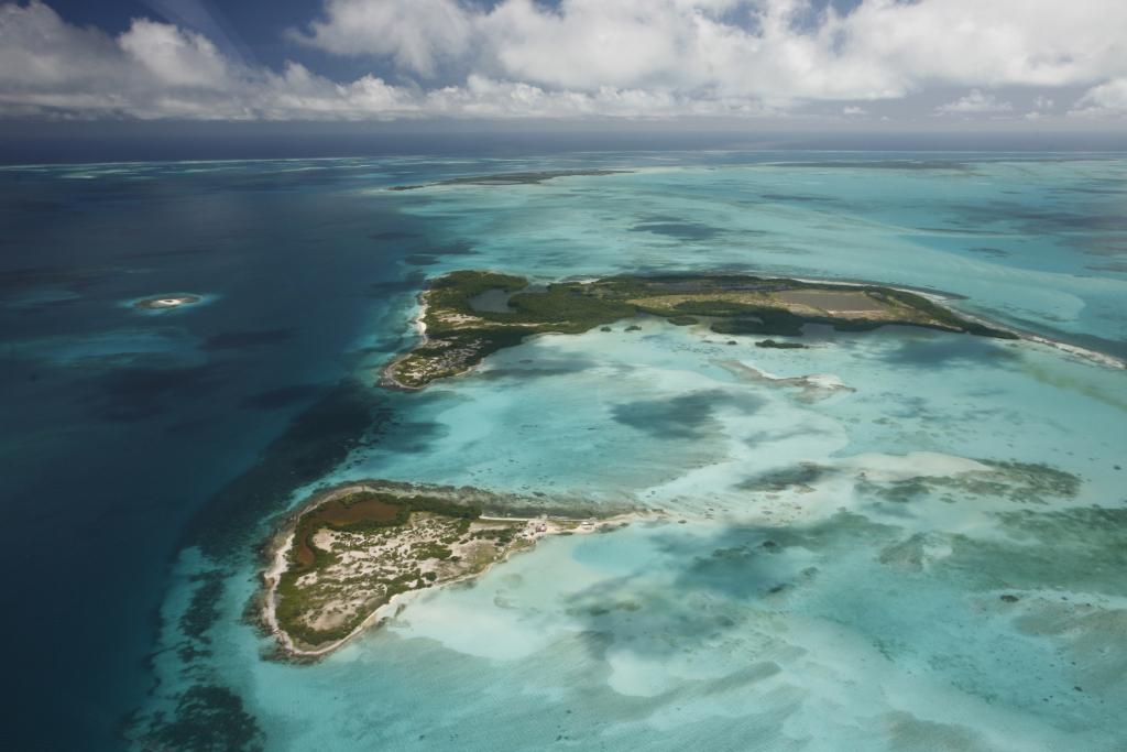 Pasapoarte de vanzare la pret redus cat costa o cetatenie in tarile din caraibe - Cat costa o piscina in curte ...